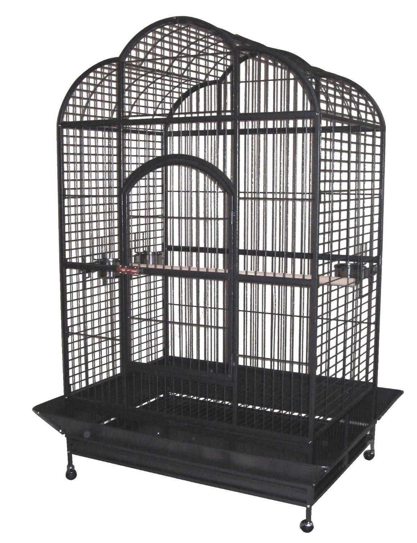 papageienk fig hier den richtigen vogelk fig finden. Black Bedroom Furniture Sets. Home Design Ideas